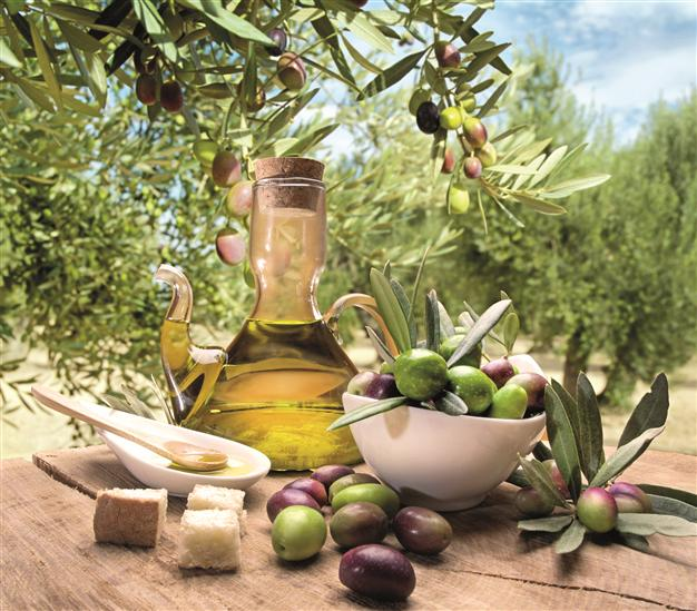 Pure Olives and Pure Olive Oil